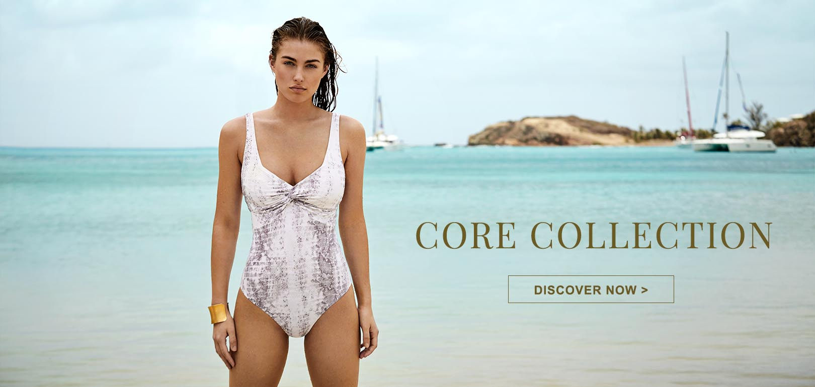 Core Collection